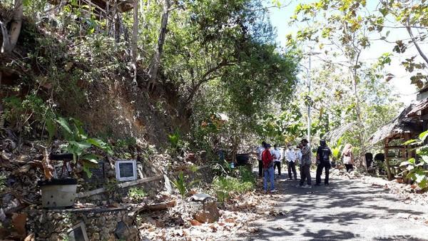 Dinas Pariwisata (Dispar) Provinsi DI Yogyakarta kemudian mengajukan pergantian objek wisata dari Watu Lumbung menjadi Hutan Pinus Sari Mangunan. (Pradito Rida Pertana/detikTravel)