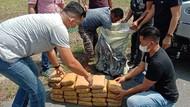 Bawa Ganja 30 Kg, Pria di Medan Ditangkap Polisi