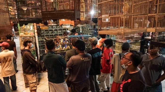 Pasar Burung Pramuka tetap bergeliat saat Jakarta berstatus PPKM level 3. Warga ramai mendatangi Pasar Burung Pramuka pada akhir pekan.