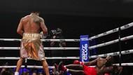 Evander Holyfield Kalah TKO dari Vitor Belfort