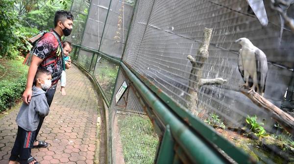 Kembali dibukanya dua wahana tersebut membuat kawasan Taman Mini Indonesia Indah (TMII) kembali didatangi para pengunjung saat akhir pekan.