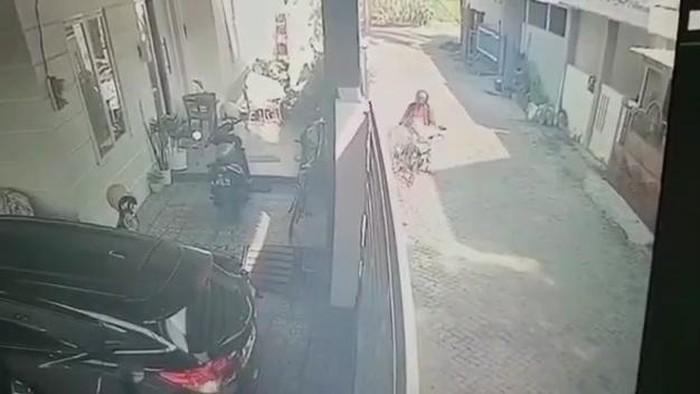viral pencurian guling