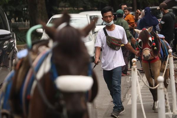 Kebun Binatang Bandung atau Bandung Zoo Logical Garden belum buka, meski dalam Perwal No 94 Tahun 2021 Bonbin Bandung sudah bisa beroperasi lagi.Foto: Wisma Putra/detikcom