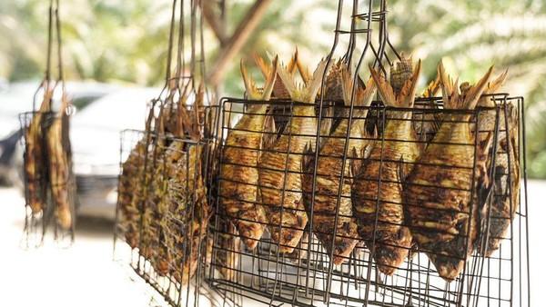 Ikan patin di Desa Wisata Koto Mesjid kemudian diolah masyarakat menjadi berbagai macam produk kuliner dengan cita rasa yang unik, seperti kerupuk kulit patin, abon patin, bakso patin, siomay patin, nuget patin, otak-otak patin, cilok patin, ikan asin patin, batagor patin, hingga es dawet patin, serta ada pula keripik batang pisang, dan kelapa jelly (dekla). Dok. Kemenparekraf