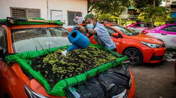 Tidak khawatir taksi-taksi itu rusak? Rupanya, taksi-taksi itu sudha kadung bobrok karena lama menganggur. Bannya kempes, mesinnya tidak mau hidup.(Getty Images/Lauren DeCicca)