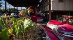 Begini Jadinya Bila Taksi di Thailand Disulap Jadi Kebun Sayuran