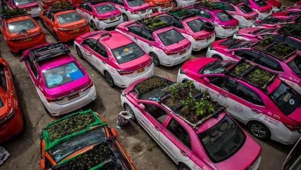 Pandemi membuat sopir-sopir taksi itu kesulitan menyelesaikan kredit taksi. Di sisi lain, pemberi kredit juga tidak bisa memaksa para sopir untuk menyelesaikan kewajiban.(Getty Images/Lauren DeCicca)