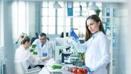 Peneliti Kembangkan Vaksin Covid-19 Berupa Tomat yang Tinggal Dimakan!