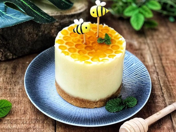 Puding Cheesecake Madu