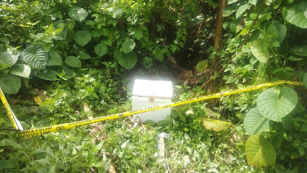 Keji! Bayi Dibuang dalam Cool Box di Sulut, Ditemukan Tewas Membusuk