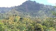 Tebing Gunung Karang Pandeglang Longsor