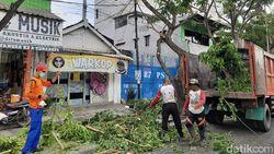 Antisipasi Pohon Tumbang Saat Hujan Deras, Perantingan Digencarkan di Surabaya