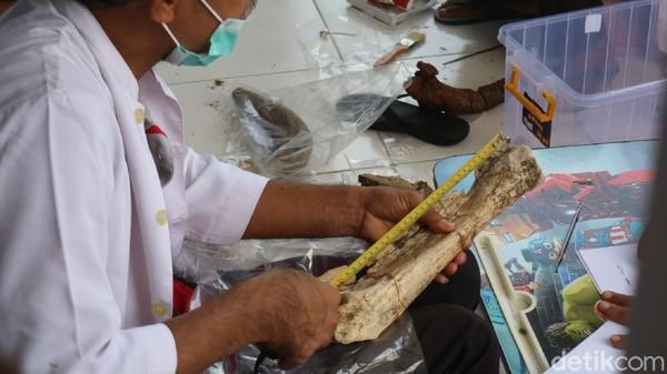 Ada beberapa alasan fosil di Museum Patiayam direstorasi atau pemulihan kembali. Pertama karena kontur tanah dan kedua faktor penggalian fosil.