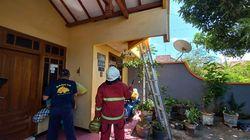 Damkar Probolinggo Kewalahan Musnahkan Sarang Tawon Ndas di Rumah Warga