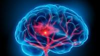 Waspadai 3 Kesalahan Minum Kopi yang Bisa Menurunkan Fungsi Otak