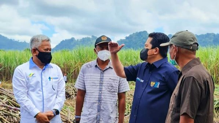 Menteri BUMN Erick Thohir kunjungi PTPN XII