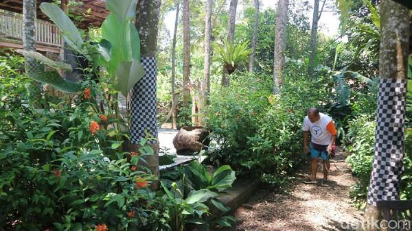 Ada pula selambu atau kain pohon yang memiliki motif Bali.