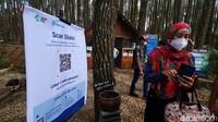 Terapkan Aturan Ganjil Genap, Wisata Pinus Sari Bantul Sepi Pengunjung