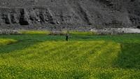 Lembah Panjshir yang Perkasa Itu Jadi Kota Hantu Kini