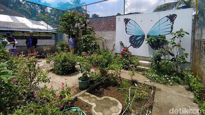 Adapun penangkaran kupu-kupu ini namanya Borobudur Butterfly Edu (BBE). Pasutri ini memanfaatkan ruangan garasi yang disulap menjadi galeri. Sedangkan penangkaran kupu-kupu memanfaatkan lahan yang berada di belakang rumahnya.