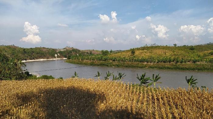 Lokasi proyek Bendung Gerak Karangnongko