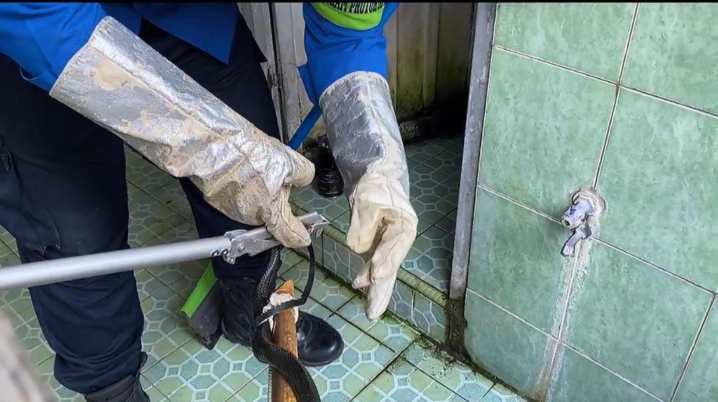 Damkar Trenggalek Evakuasi Ular Kobra dari dalam Sumur