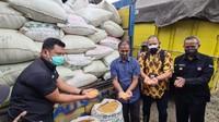 Berapa Banyak Jagung yang Diterima Suroto Langsung dari Jokowi?