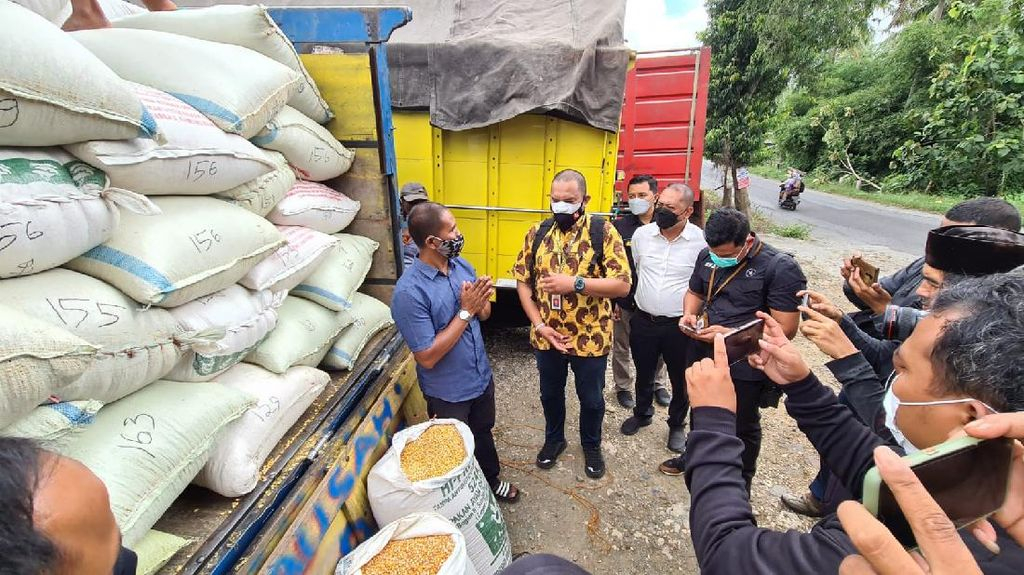 Wujud Bantuan 20 Ton Jagung dari Jokowi untuk Peternak Ayam Suroto