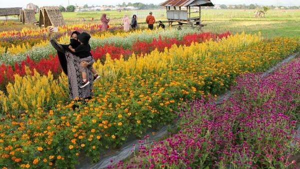 Sejumlah objek wisata di berbagai daerah Indonesia kembali dibuka untuk umum seiring dengan menurunnya level PPKM di daerah tersebut. (ANTARA FOTO/Arnas Padda)