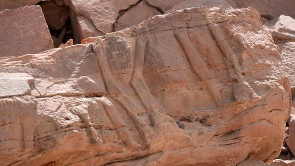 Namun menurut kajian terbaru, estimasi umur rangkaian pahatan unta tersebut berkisar antara 7.000-8.000 tahun yang lalu. (AFP)