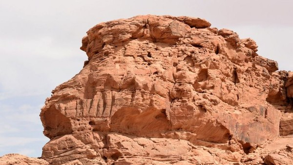 Kini erosi memperburuk kondiri relief unta, sehingga menimbulkan tantangan bagi para peneliti untuk mengkajinya.(AFP)