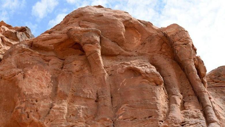Pahatan unta tertua di dunia ada di Arab Saudi