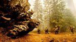 Pohon Raksasa di California Terancam Punah oleh Kebakaran Hutan