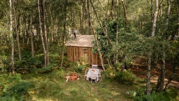 Para tamu akan dibawa dalam tur area di Ashdown Forest di East Sussex. Selama menginap, Anda akan diajak bermain poohsticks di Poohsticks Bridge dan memakan makanan yang terinspirasi dari kartun Winnie the Pooh.