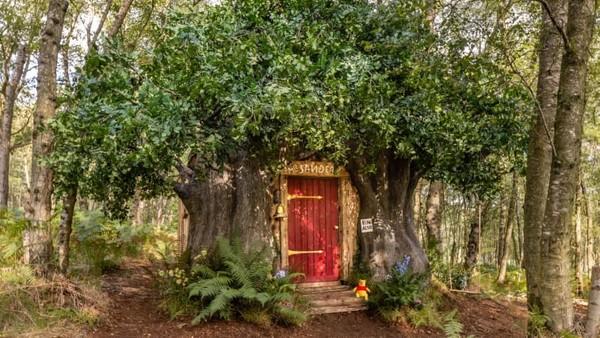 Dibuat bertingkat, rumah pohon Winnie the Pooh menyerupai aslinya di kartun. Diberitakan CNN, adalah ilustrator Pooh, Kim Raymond, yang menjadi tuan rumahnya.