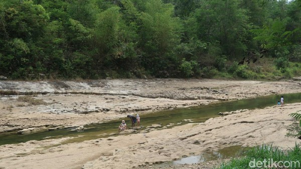 Sebagian lagi tampak anak-anak tengah bermain air di sungai tersebut dengan riang gembira. Sedangkan orangtua anak-anak itu terlihat sedang mengawasi sembari berswafoto di sungai Oya. (Pradito Rida Pertana/detikTravel)