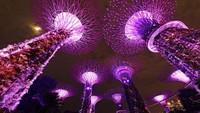 Tengah Berjibaku Lawan Corona, Singapura di Kala Malam Tetap Mempesona