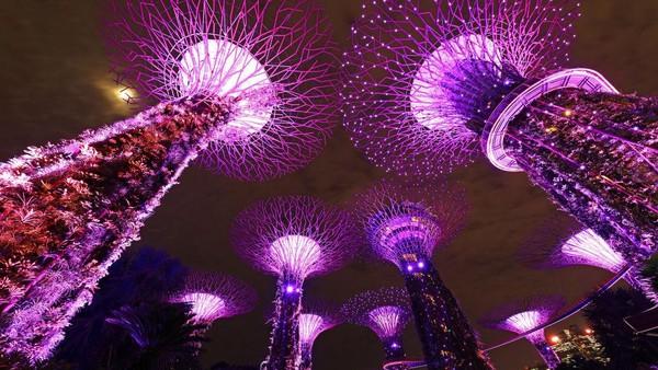 Kerlap-kerlip lampu menghiasi kawasan Gardens by the Bay di Singapura saat malam. Seperti diketahui, Singapura jadi salah satu negara tetangga Indonesia yang saat ini masih berjibaku mengatasi lonjakan kasus COVID-19.