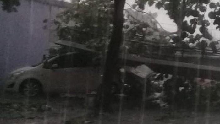 Pohon tumbang di Jl Margonda, Depok timpa mobil, Selasa (21/9/2021).