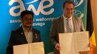 RI & Belgia Kerja Sama Manajemen Peternakan Belgian Blue