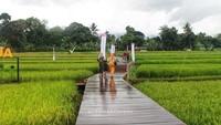 Foto: Desa Mulyaharja, Tempat Liburan Fotogenik di Bogor