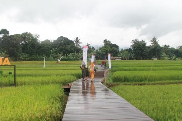 Desa ini terletak di Mulyaharja RT 05/RW01, Kecamatan Bogor Selatan, Kota Bogor, Jawa Barat. (frameofjndrl)