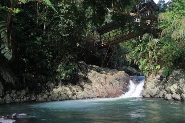 Curug atau air terjun Putri Kencana terbilang mudah untuk dijangkau. Lokasinya, tidak jauh dari pusat Kota Bogor(Foto: frameofjndrl/Instagram)