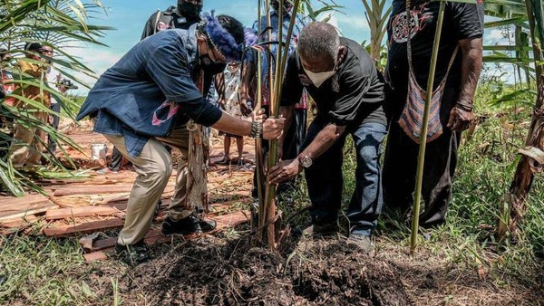 Sandiaga tampak menanam pohon di Kampung Yoboi.