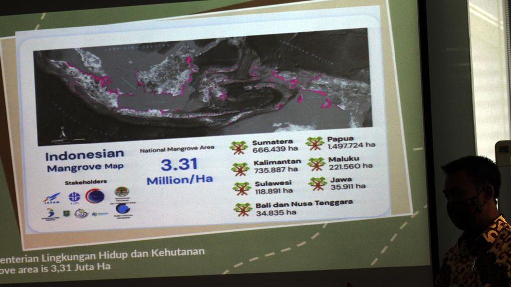 Kerja Sama untuk Penambahan Hutan Mangrove