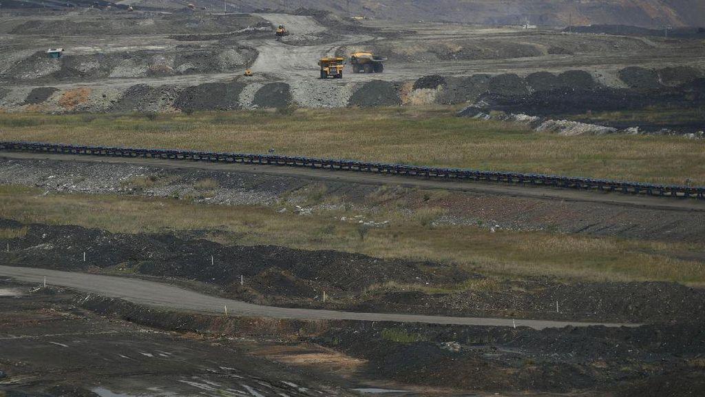 Cadangan 3 Miliar Ton, PTBA Target Masuk 3 Besar Produsen Batu Bara