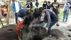 Bayi Dugong di Polman Mati Usai Sepekan Dirawat, Ini Penjelasan Dokter