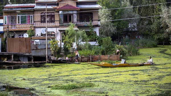 Penelitian dari Universitas Kashmir pada 2016 menemukan, hanya 20 persen air danau yang relatif bersih. Sementara 32 persennya sangat rusak. (Mukhtar Khan/AP)