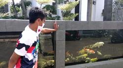 Kreatif, Pagar Rumah Warga di Malang Berbentuk Kolam Ikan Koi