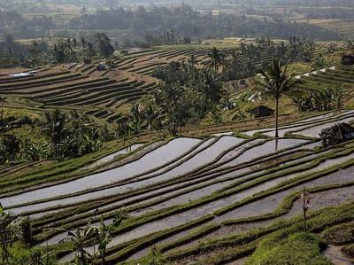 Pariwisata Bangkit, 3 Destinasi Domestik Ini Jadi Primadona
